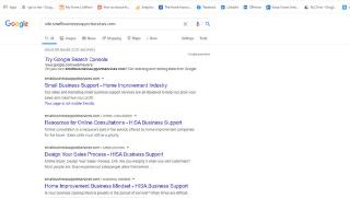 Website-promotion-1-Google-Index-check